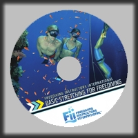 DVD - Basic Stretching For Freediving